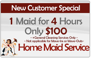1 Maid 4 Hours for $100